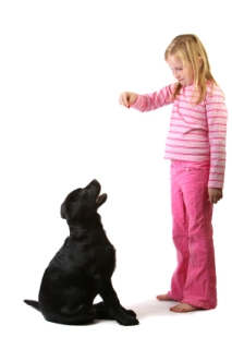 girl training her dog